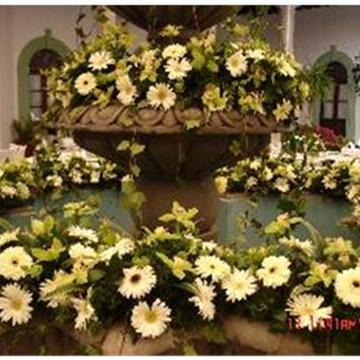 Flores Yapel - Floristería