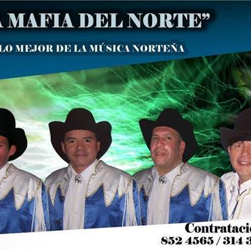 Agrupación Musical la Mafia del Norte