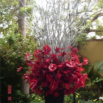 Tmatikas Arte Floral & Diseño